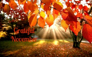 grateful November