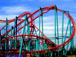 Roller Coaster Reading : All readers should have the luxury to go on such a ride!